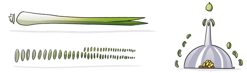 Salade Nicoise Recette